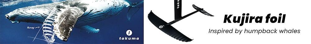 Takuma wing foil